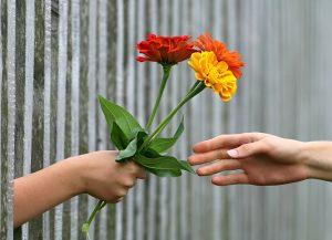 dar ramo de flores